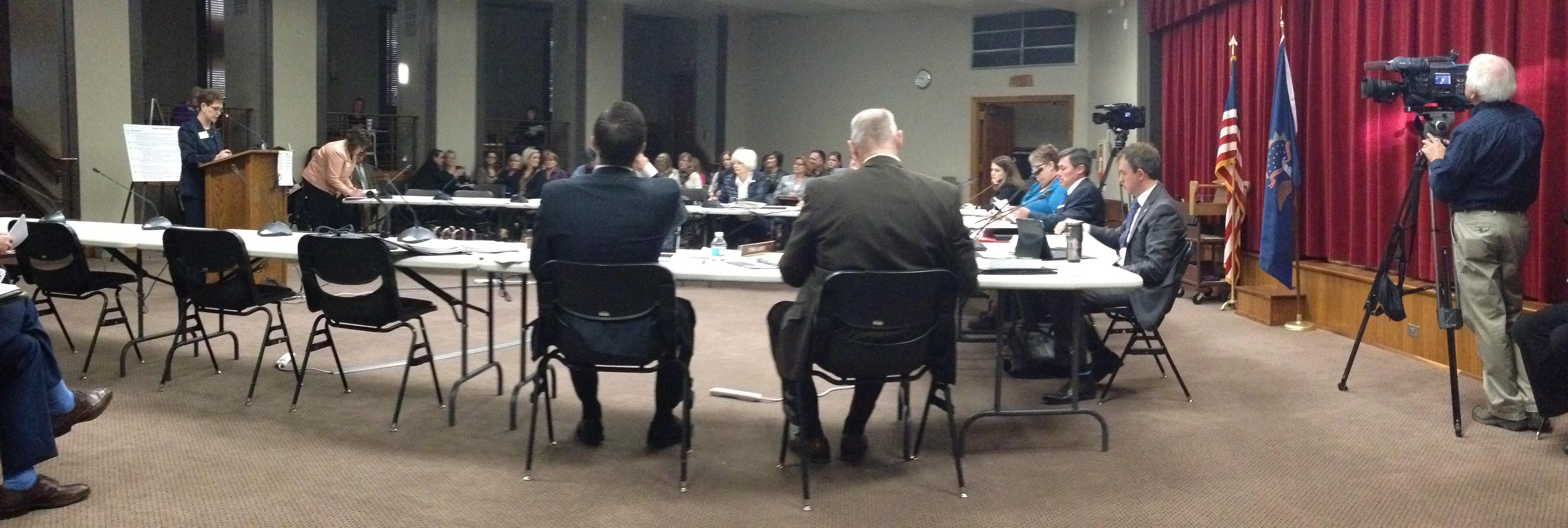Lin Sex Trafficking testimony Jan 28 2015 c